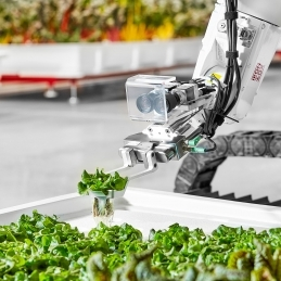 Grown by robots, with love